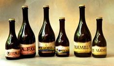 ducato_beers_38