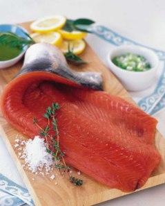 salmon_fillet